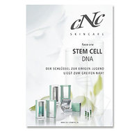 face one Stem Cell DNA